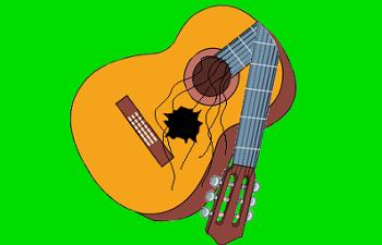 houd je gitaar in topconditie www.gitaarvanhout.nl gitaarles in Aalst-Waalre